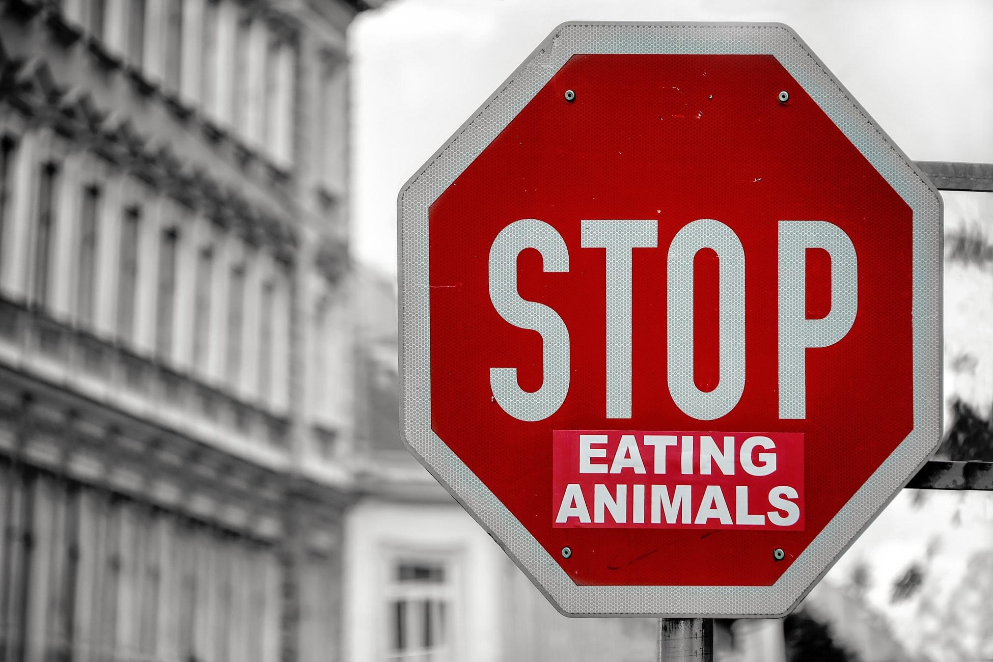 Stop eating animals - Go vegan